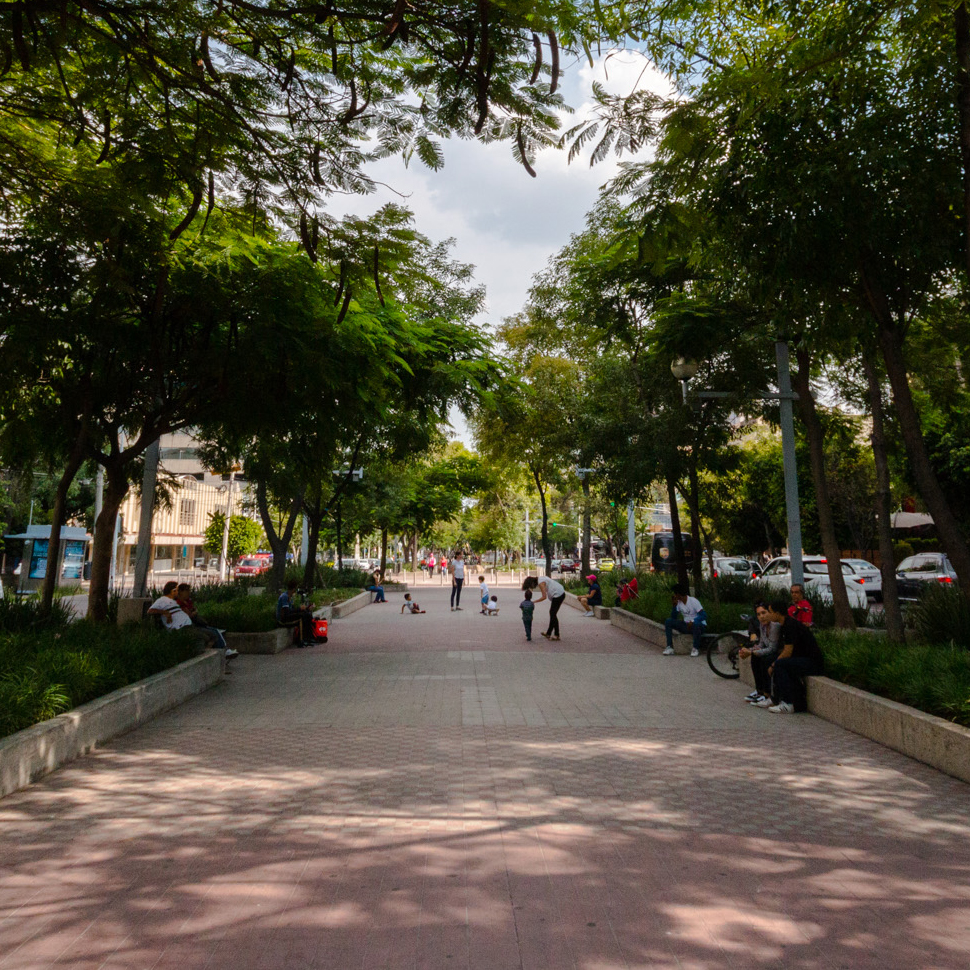 Corredor Chapultepec Guadalajara